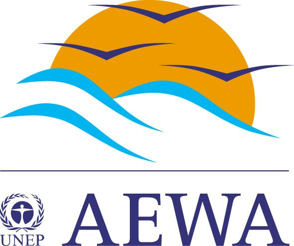 Aewa_4colours1